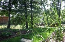 JAN-SAD ogrody - Pracownia architektury krajobrazu