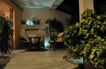 Projekt i aranżacja zieleni, ogród zimowy, Olsztyn