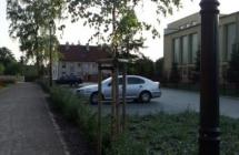 Projekt i aranżacja zieleni, Olsztynek