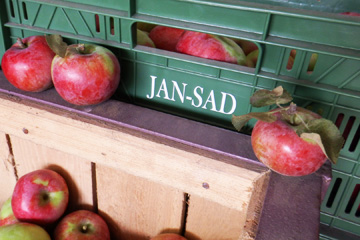 JANSAD - owoce